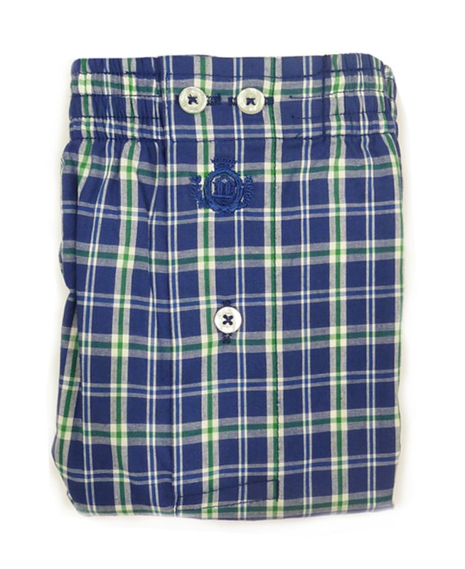 Boxer Guasch de tela a cuadritos verde y azul
