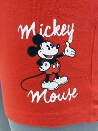 Boxer Admas Mickey Mouse