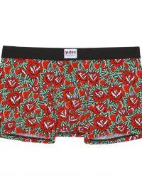 Boxer HOM x Herve Lenfoire con rosas rojas