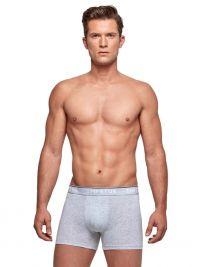 Boxer Impetus Organic Cotton en gris