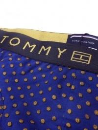 Boxer Tommy Hilfiger Gift Gold