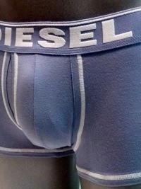 Boxer Diesel Rocco