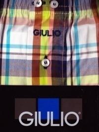 Giulio Boxer Tela Cuadros Tech